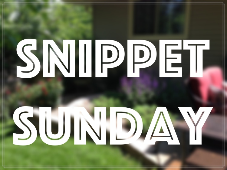 Snippet Sunday