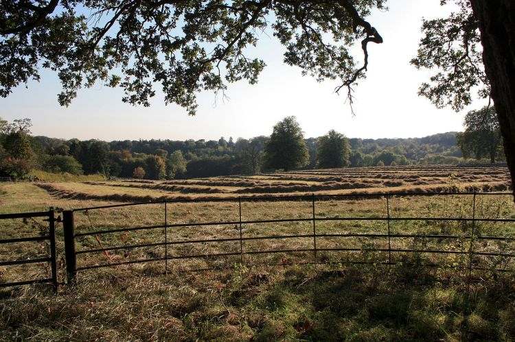 1280px-greys_court_henley-on-thames_6228353020